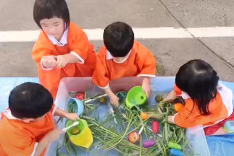 Sensory Play หน่วยผักผลไม้