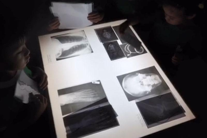 Sensory Play หน่วยตัวเรา Lightbox X-Ray