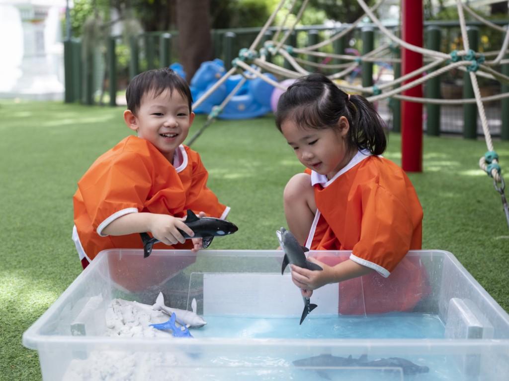 Sensory Play: Nature Around Us