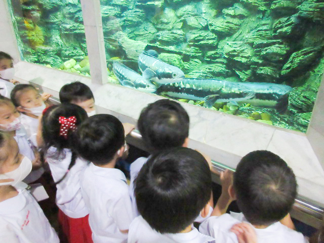 ทัศนศึกษาสถานแสดงพันธุ์สัตว์น้ำกรุงเทพ
