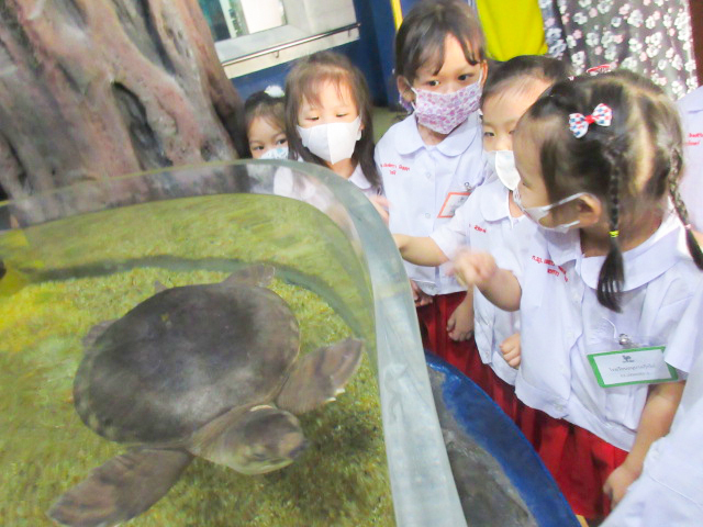 School Field Trip to Bangkok Aquarium