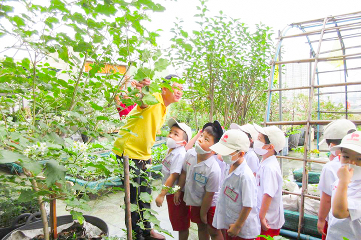 School Field Trip to Roof Garden at Klongtoey District Office