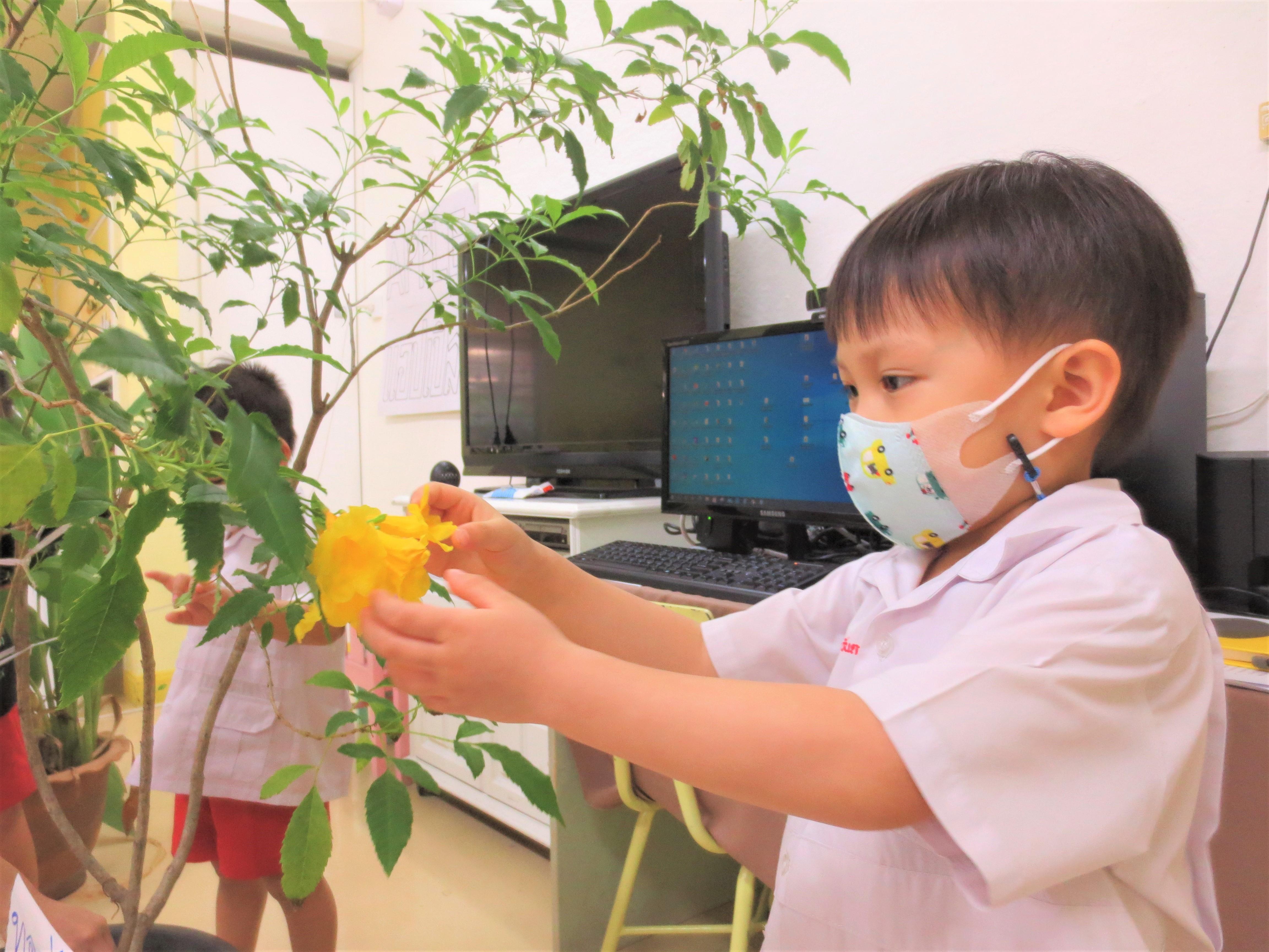 กิจกรรมหน่วย ธรรมชาติของสัตว์และพืช ชั้นอนุบาลปีที่ 1