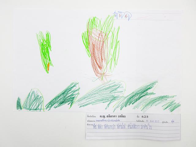 ผลงานเด็กหน่วย ธรรมชาติรอบตัว ชั้นอนุบาลปีที่ 2/3