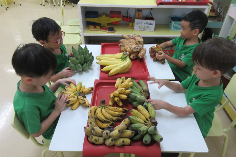 เรื่องกล้วย ระยะที่ 2 สัปดาห์ที่ 2