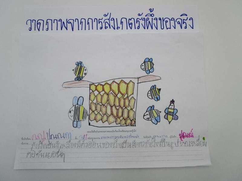 เรื่องน้ำผึ้ง ระยะที่ 2 สัปดาห์ที่ 2