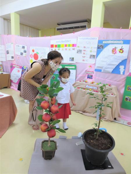 ผู้ปกครองเยี่ยมชมนิทรรศการ Project Approach เรื่องแอปเปิ้ล