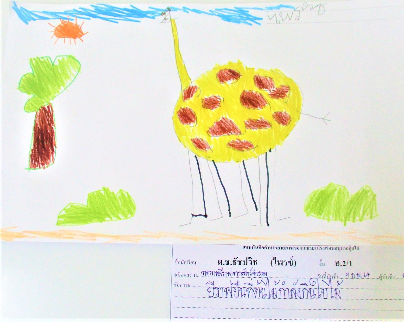 Giraffe, Stage 2 Week 1