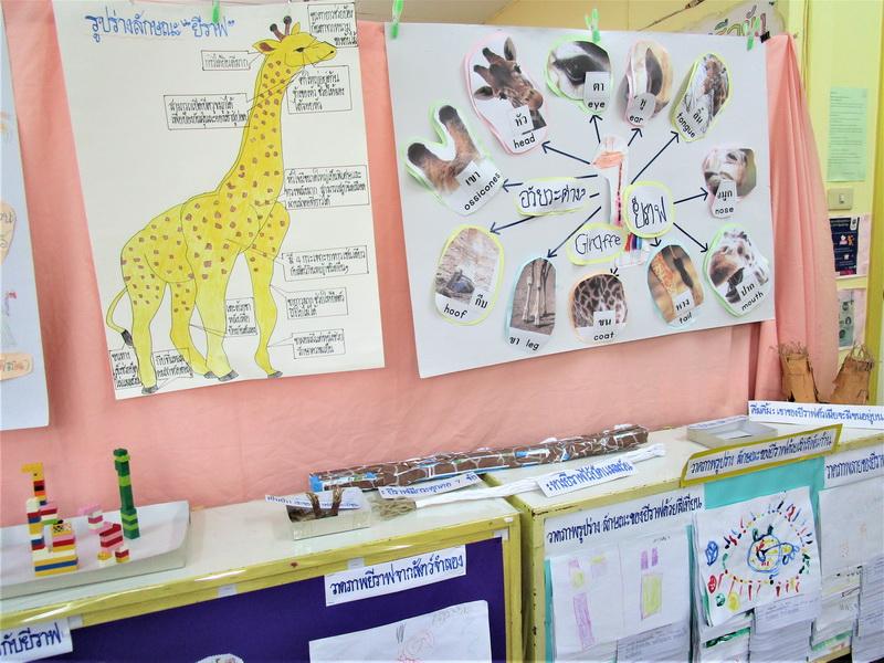 Giraffe, Stage 3