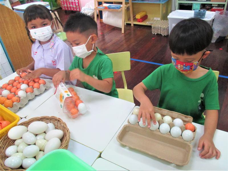 เรื่องไข่ ระยะที่ 2 สัปดาห์ที่ 3